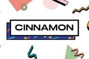 V ČR je vyvíjena platforma Cinnamon založená na novém způsobu monetizace obsahu
