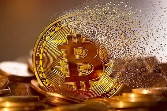 V roce 2017 zařídila cenový vrchol bitcoinu jediná velryba, tvrdí akademici